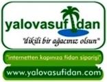 Yalova Su Fidan