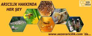 bal ve arı ürünleri sezer arıcılık expogi.com