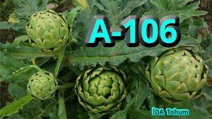 Tarımsal Tedarik Ürünleri İDA Tohum expogi.com