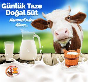 Organik Yumurta ve Günlük Taze Süt Hanımeli çiftliği www.expogi.com (1).