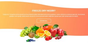 Dondurulmuş Kurutulmuş Gıdalar fresheld freeze dry www.expogi.com (1).