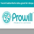 Prowill Probiyotik